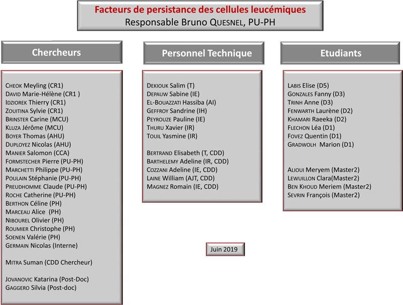 Organigramme de l'equipe du Professeur Bruno Quesnel