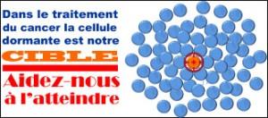 IRCL-cellule-dormante